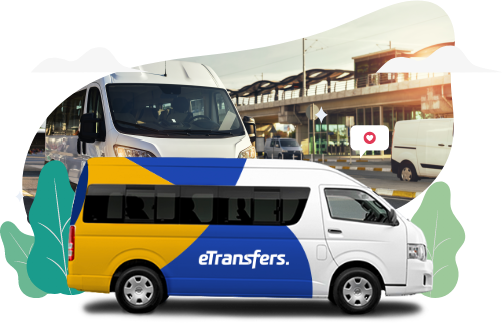 los Cabos Group Transportation